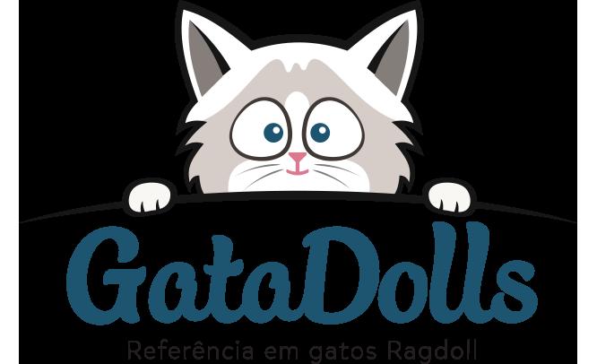 Gatil GataDolls